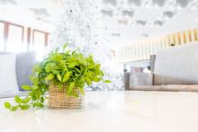 Plant In Basket Decoration On ...