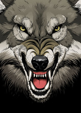 Wolf Face On The Dark Background