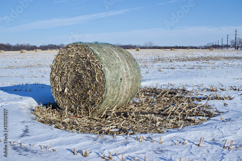 Sunny winter landscape view of round corn stalk bales setting in a snow covered Wallpaper Mural