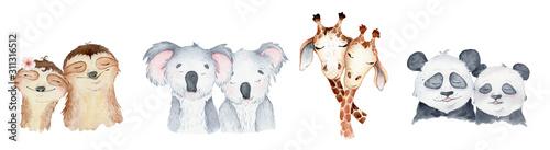 kolekcja-znakow-akwarela-zwierzat-panda-lenistwo-zyrafa-koala