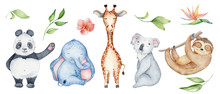 Watercolor Animals Character C...