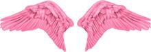 Pink Angel Wings - Vector Illu...