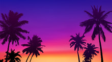 Black Palm Trees Silhouettes A...