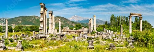 Photo Ruins of Aphrodisias in Turkey
