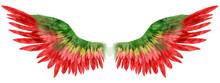 Beautiful Red Green Magic Watercolor Wings