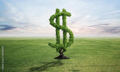 Green plant in shape of dollar sign grows at field Tapéta, Fotótapéta