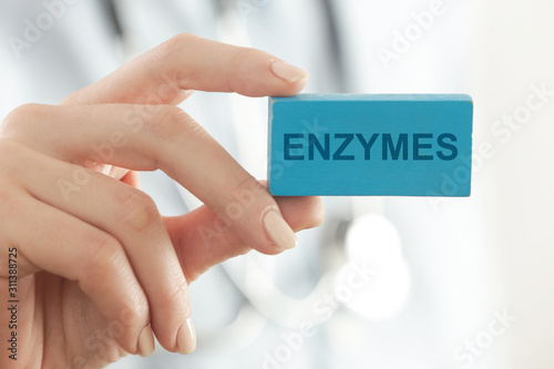 Doctor advises. Medical worker holds ENZYMES sign. Canvas Print