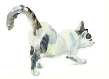 Watercolor Painting Cat Stretc...