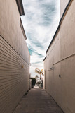 Fototapeta Uliczki - narrow street in La Jolla, San Diego