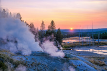 Geyser Of Yellowstone
