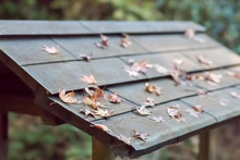 An Old Roof Of A House With Le...