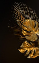 Gold Leaves Plant Tropical Mon...