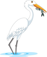 Cartoon Stork Eating A Fish
