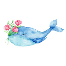 Cute Cartoon Blue Whale With Bouquet Of Red Flowers; Watercolor Hand Draw Illustration; With White Isolated Background
