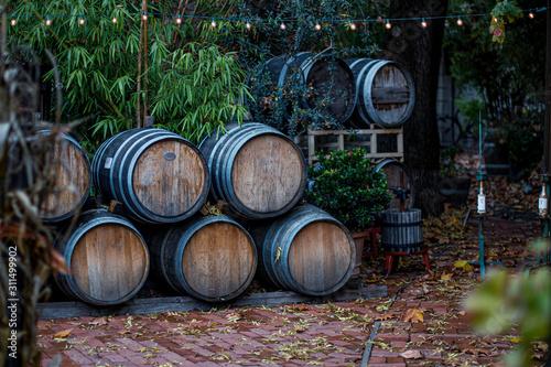 Cuadros en Lienzo Wine barrels stacked outside near forest
