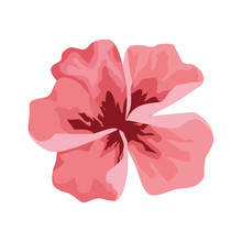 Pink Tropical Flower Icon