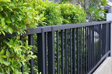 Black Steel Iron Fence Of Boun...