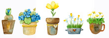 Watercolor Set Of Potted Flowers. Set Of Images For The Flower Shop In Watercolor Style. Bouquets Of Flowers In Pots, Tulips, Asters, Hydrangeas And Drtsgie. Watercolor Flowers.