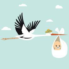 Flying Stork Carrying A Cute B...