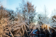 Frost On The Glass, Window, Stockholm, Nacka, Swede, Sverige, Europe, Eu