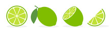 Vector Lime Slice Green Illust...