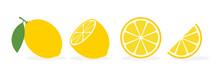 Lemon Slice Citrus Fruit Flat ...