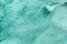 Turquoise Dyed Rabbit Fur Text...