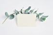 canvas print picture - Mock up of Eucalyptus leaves and paper clip with place for text on white background. Wreath made of eucalyptus branch. Flat lay, top view