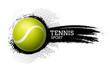 Tennis Ball Vector Background Illustration Sport Graphic Ball Icon On Splash