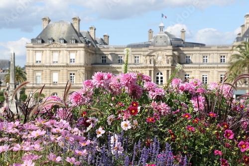 Obraz na plátně Jardin du Luxembourg et Palais du Sénat à Paris