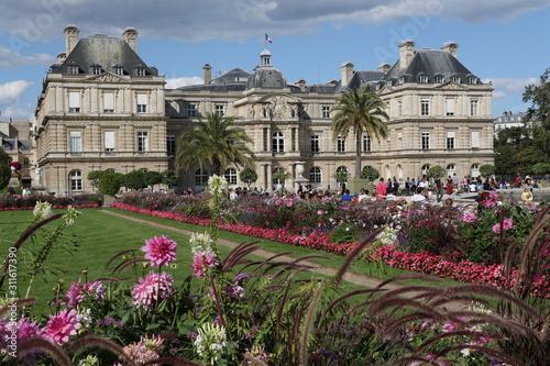 Fotografie, Obraz Jardin du Luxembourg et Palais du Sénat à Paris