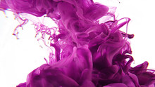 Pink Explosion On White Background