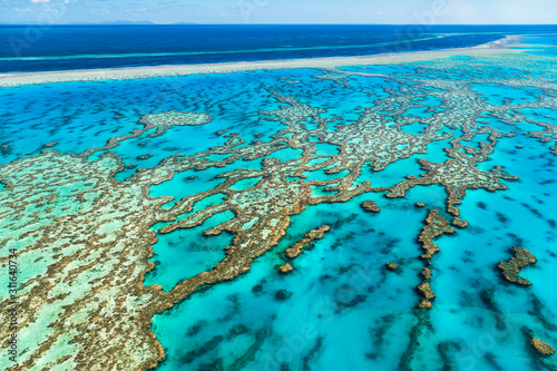 Obraz Great Barrier Reef.. Australia - fototapety do salonu