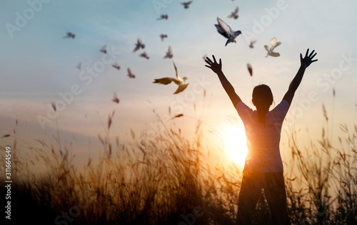 Canvas Print - Woman praying and free bird enjoying nature on sunset background, hope concept