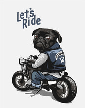 Black Pug On Motorcycle Cartoo...