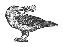 Raven Bird With Rose Flower In...