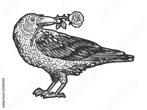 Slika na platnu Raven bird with rose flower in its beak sketch engraving vector illustration