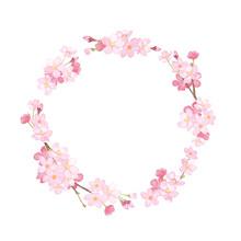 春の花:さくらの円形フレーム。水彩イラスト