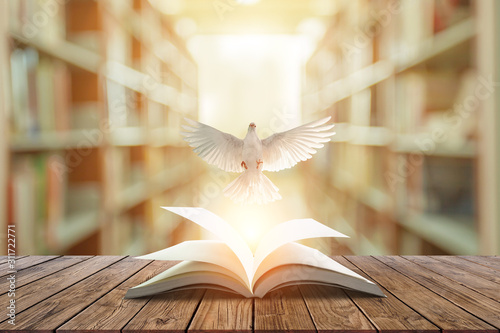 Foto En Lienzo - White pigeons fly out of books that are flicked by the wind in beautiful light on blur Library background.Education freedom concept and international day of peace