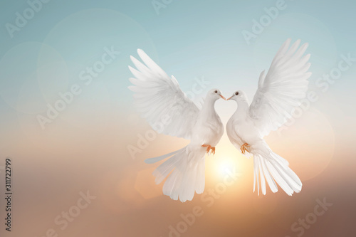 Foto En Lienzo -  White pigeons flying in heart shape on pastel background and Valentine's Day