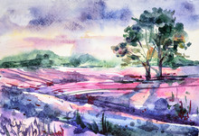 Watercolor Hand Painted Landscape With Lavender Fields. Illustration Can Be Used For Background, Design Greeting Cards For Holiday, Birthday, Invitations, Poster, Print.