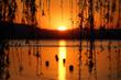 canvas print picture - Sonnenuntergang in Sipplingen