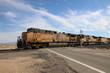 Union Pacific Train fährt durch die Wüste