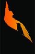 Woodpecker. Vector image. Black orange background.