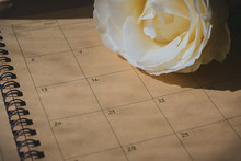 Empty Message In Schedule Book Of Calendar With White Rose Flower Put On Table Work