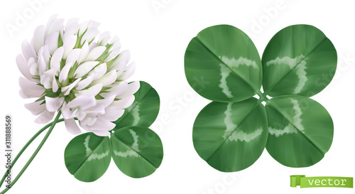 Fotografía  Four leaf clover and clover flower. 3d realistic vector icons