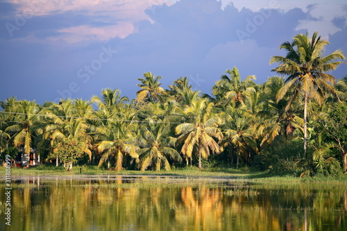 Photo Backwater at Kerala