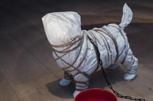 Dog Enclosure In Paper Wrap Dog Enclosure In Paper Wrap With Chain. Chain.