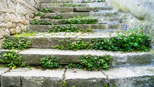 Old Stone Stairs With Moss And Weeds In Rovinj, Croatia, Europe. Bright And Normal Version.