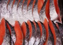 Fresh Orange-red Salmon Slices For Sale